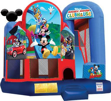 Mickey Backyard Combo