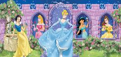 disney-princess-panel